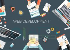 Custom Website Development: A Focus On Specific Needs Of Target Audience