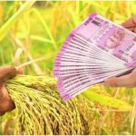 How to Apply for Kisan Credit Card Loan?
